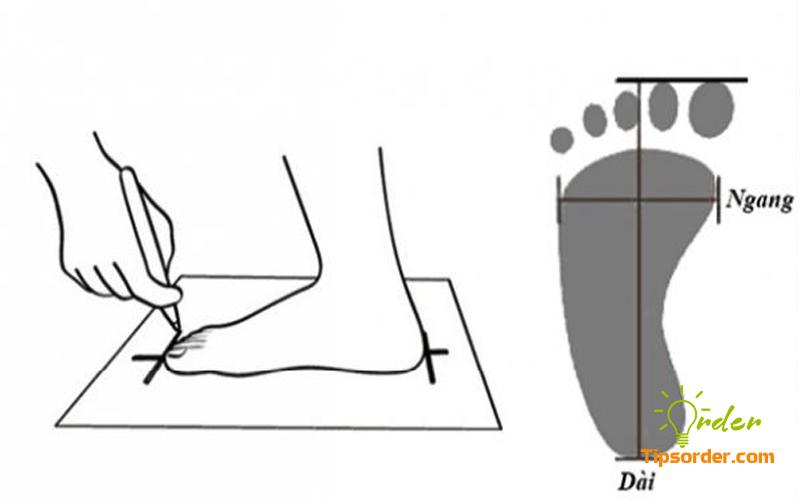 Giữ cố định bàn chân của bạn trên tờ giấy và vẽ khung bàn chân